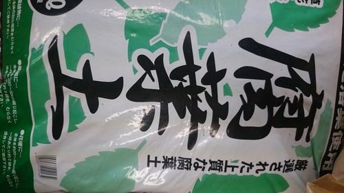 DSC_3119.JPG