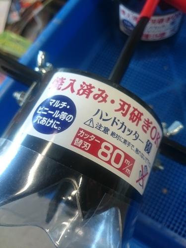 DSC_4643.JPG