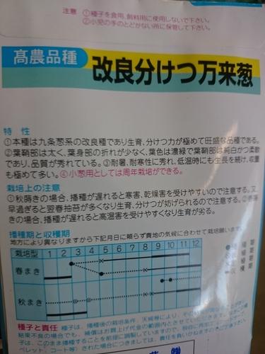 DSC_6128.JPG